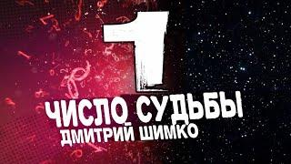 "Число Судьбы ""1"". Астротиполог - Нумеролог - Дмитрий Шимко"
