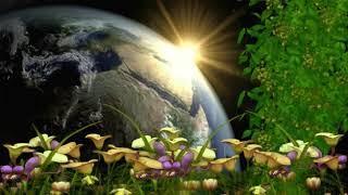 что нас ждет во время перехода | послание световых цивилизаций | медитация