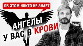 ЭТО МЕНЯЕТ ВАШУ КРОВЬ КАЖДЫЙ ДЕНЬ! Сергей Финько